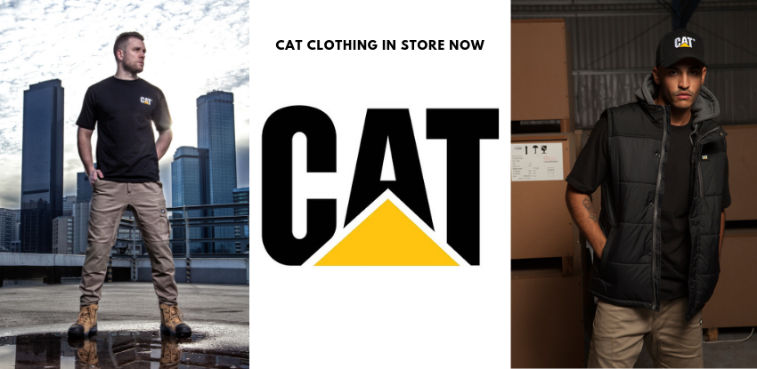 cat clothing in store now